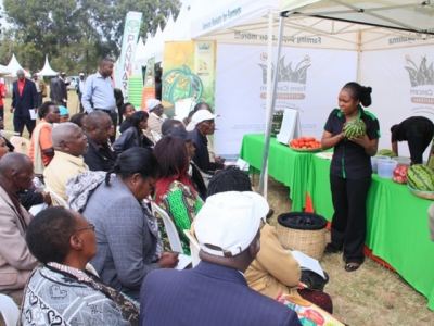 Exhibition creates sustainable market and business linkages to 540 smallholder farmers
