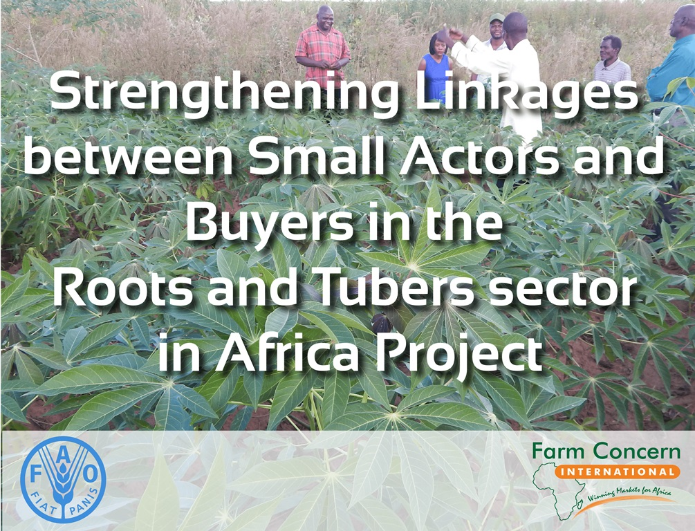 MALAWI | Strengthening Linkages between Small Actors and Buyers in the Roots and Tubers sector in Africa Project