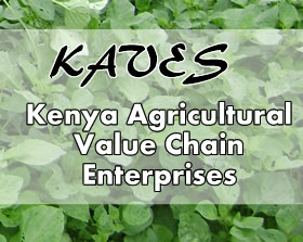 The USAID-KAVES project's goal is to increase the productivity and incomes of smallholders and other actors along the value chain, thereby enhancing food security and improving nutrition.