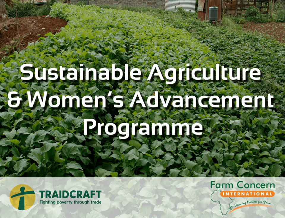 Sustainable Agriculture & Women's Advancement: (SAWA)